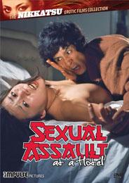 ホテル強制わいせつ事件 犯して! / Sexual Assault at a Hotel