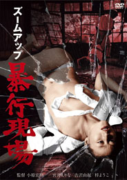 Region 2 Japan DVD cover